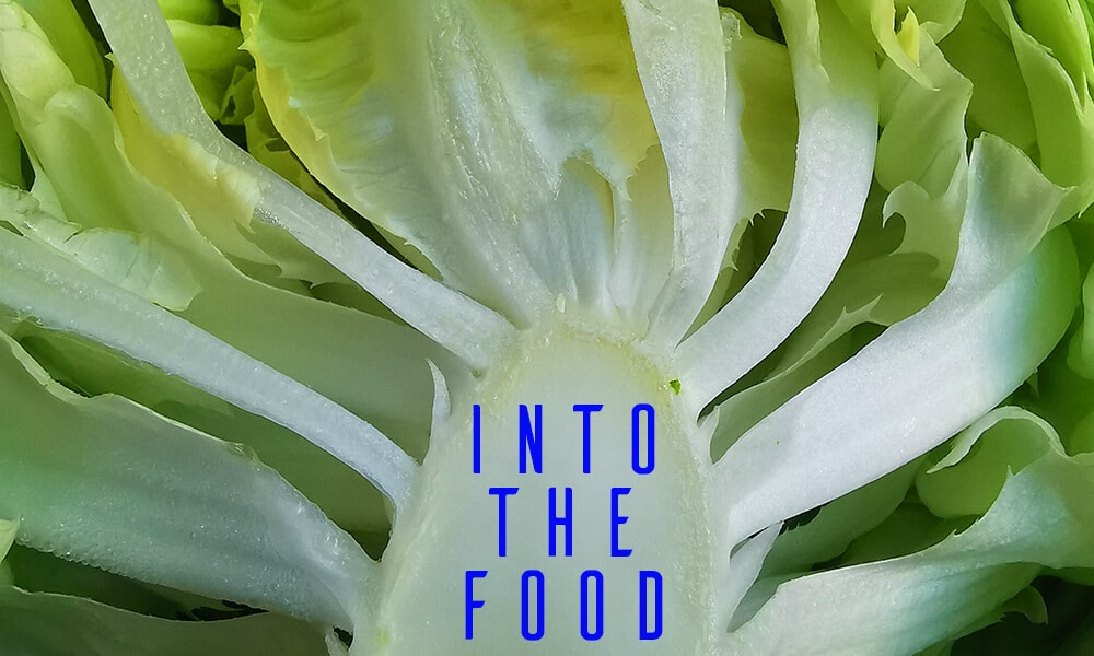 Into The Food